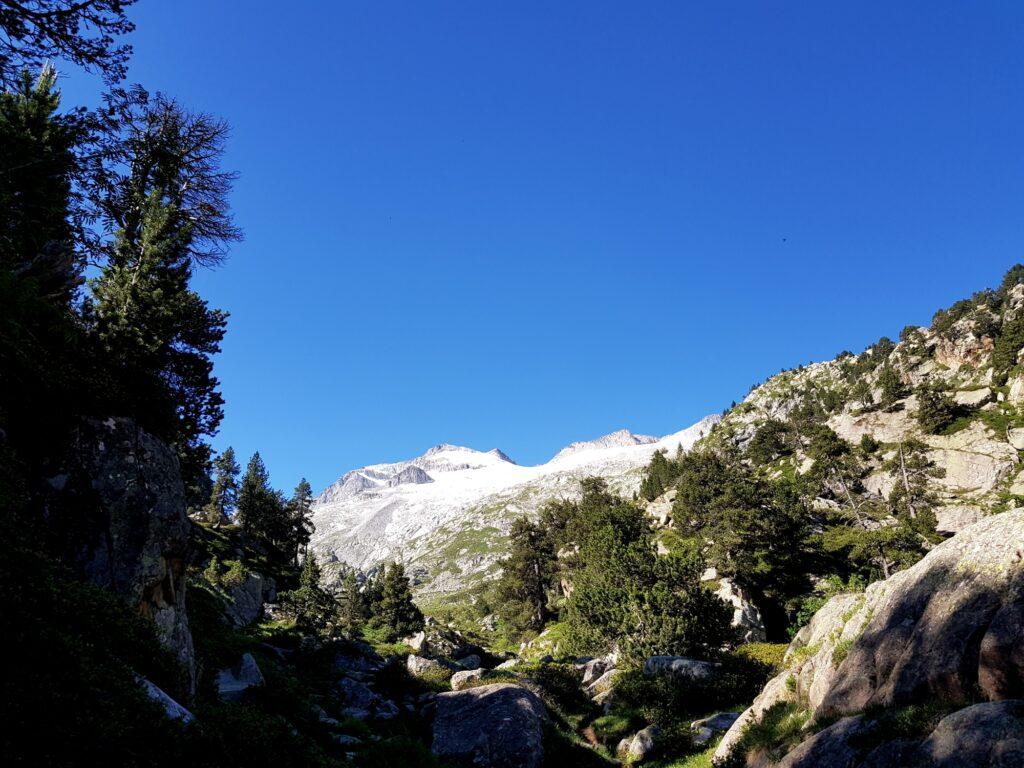 Baumgrenze in den Pyrenäen