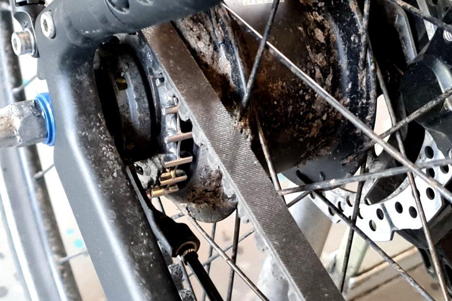 Mein Fahrrad mit Riemenantrieb