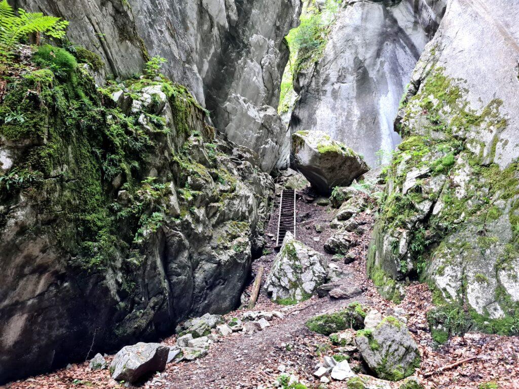 Grande Traversée des Alpes Teil 2: Anciennes Gorges des Tines