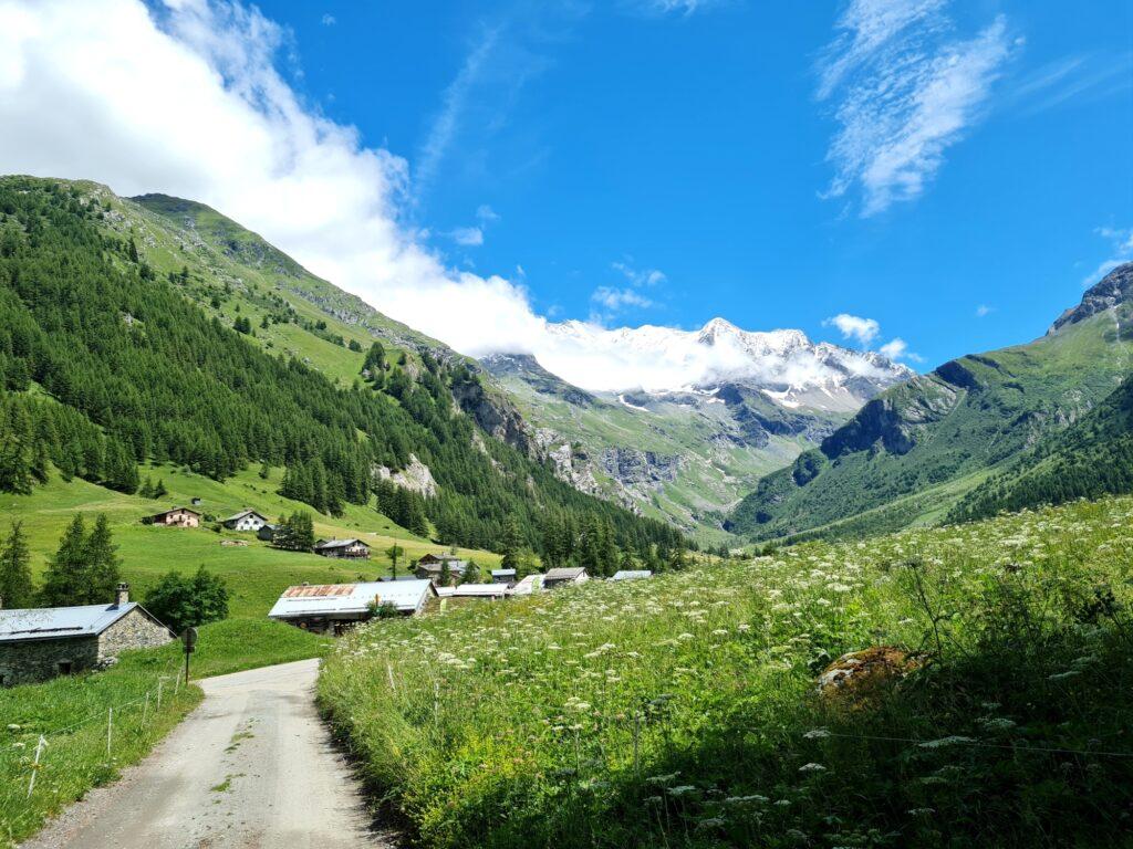Grande Traversée des Alpes Teil 4: Blick auf das Vanoise-Massiv von les Lanches