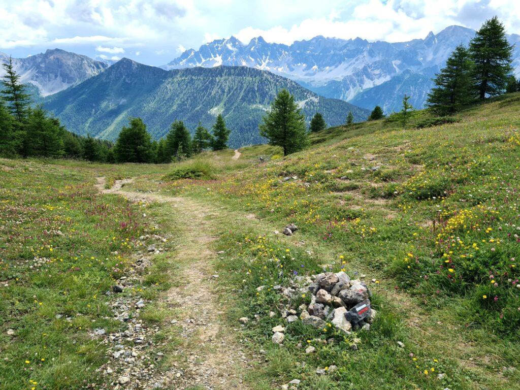 Grande Traversée des Alpes Teil 7: Blick vom Col Fromage auf Monviso
