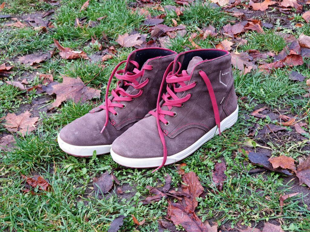 Lowa Dublin GTX Schuhe
