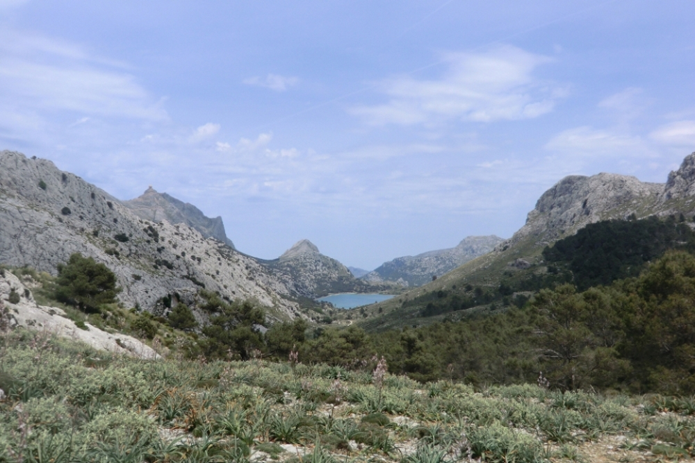 Cuber-Stausee, Mallorca